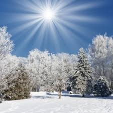 sunnywinterday_1